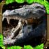Wildlife Simulator Crocodile apk file