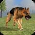Wild Dog Survival Simulator Mod apk file