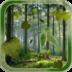Forest Live Wallpaper apk file