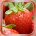 Strawberry Live Wallpaper apk file