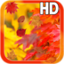 Autumn Leaves Hd Free apk file