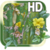 Flower Picture Live HD apk file