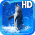 Animal Dolphin Live Wallpaper apk file