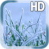 Winter Grass LWP apk file