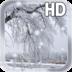 Snow Live Wallpaper apk file