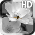 Black White Flower LWP apk file