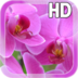 Pink Orchid Live Wallpaper apk file