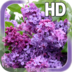 Flower Lilac Live Wallpaper apk file