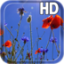 Poppies flowers LWP apk file