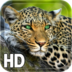 Leopard Live Wallpaper apk file