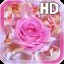 Rose Petals Live Wallpaper apk file