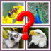 Guess The Animal apk file