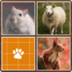 Classic memory game. Flip the cards to find matching pairs.  apk file