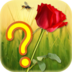 Guess the Flower apk file