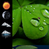 Weather Clock Widget Shamrock apk file