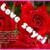 Love Sayri 0001 apk file