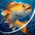 Fishing Hook (MOD, Unlimited Money) apk file