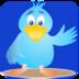 Bird Games apk file